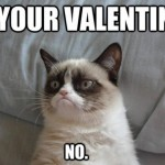 >Why VDay is Hilarious…