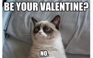 Cat VDay meme